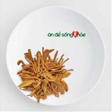 Đông trùng hạ thảo AndeSK  sấy khô 20 gram